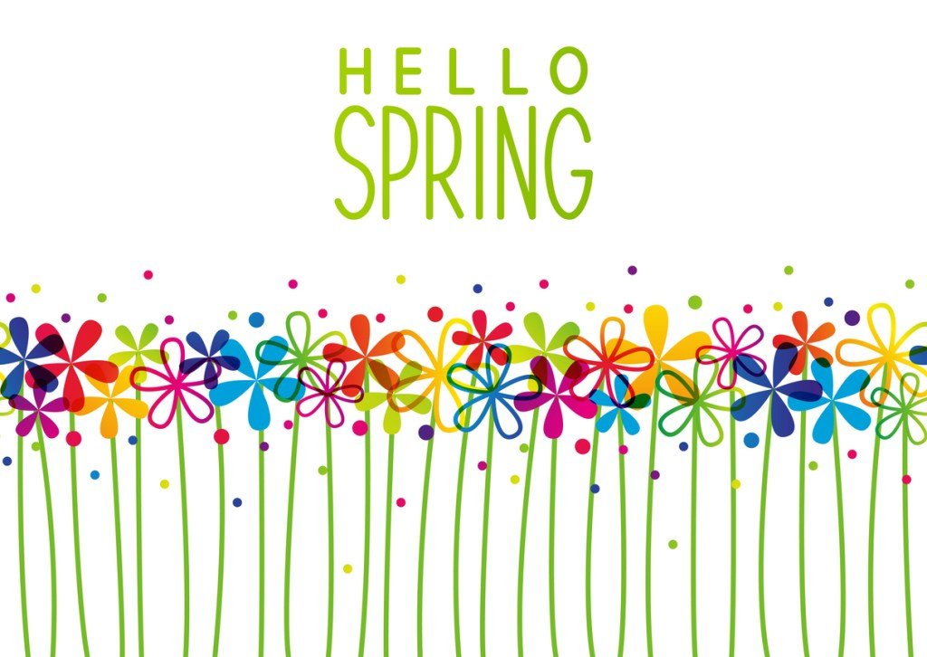 colorful spring flowers - spring cleaning